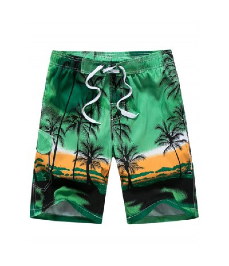 3D Coconut Tree Print Board Shorts